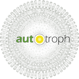Logo-mesh title no background.png