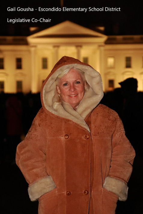 Gail Gousha - Legislative Co-Chair