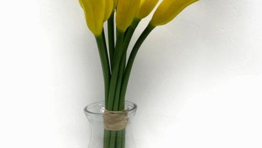 Gloquets-Cala Lillies