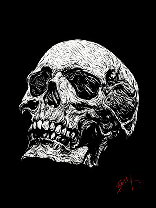 BW-Skull