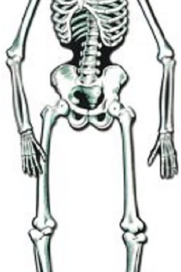 Club Pack of 48 White and Black Jointed Skeleton Halloween Hanging Decorations