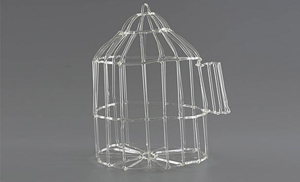 כלוב זכוכית