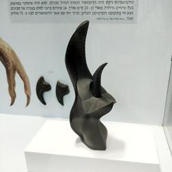 ארס שחור, תערוכה: מדעי החיים