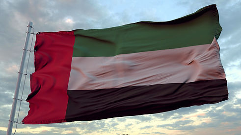 flag-united-arab-emirates-waving-wind-against-deep-beautiful-sky-sunset.jpg