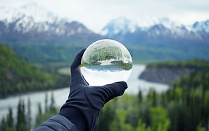 Nature Reflecting on Crystal Glass