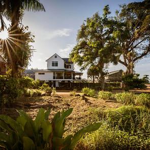 Plantage Peperpot Suriname