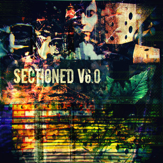 VARIOUS ARTISTS - SECTIONED V.6