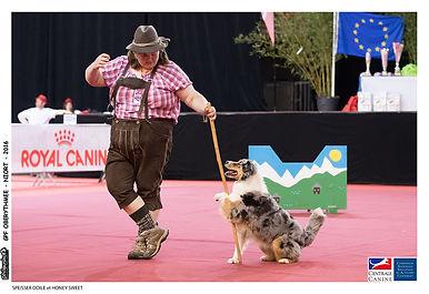 dancing dog.jpg