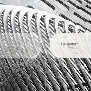 VARIOUS ARTISTS - TENSEGRITY
