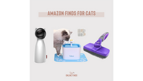 Amazon Finds for Cats
