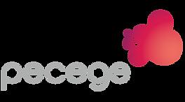 LOGO-NOVO-PECEGE-01-PNG-e1565621881638-3