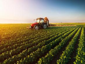 Uma Visão Geral sobre Agronegócio e Alimentos