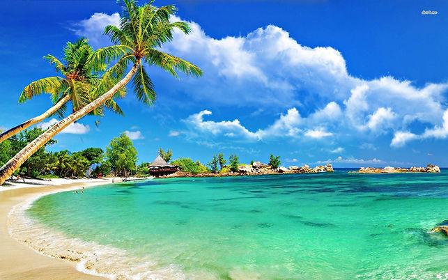 island strip.jpeg