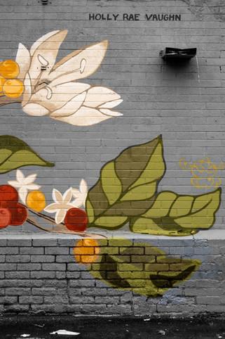 Graffiti 371