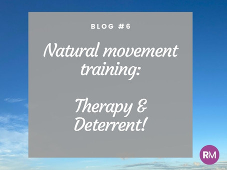 Natural movement training - therapy & deterrent!
