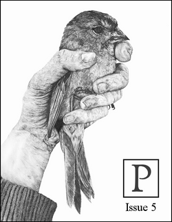 Poecology issue-5-cover-464x600