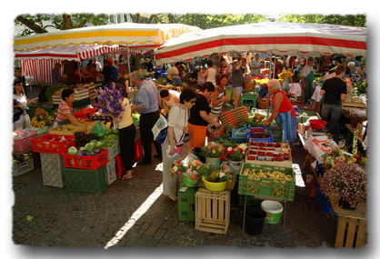 Local Markets & Shopping