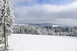 Millevaches plateau-14