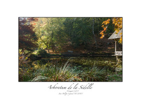 arboretum_sédelle.jpg