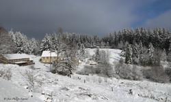 Millevaches plateau-30