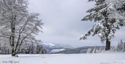 Millevaches plateau-17