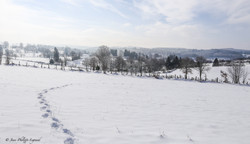 Millevaches plateau-5