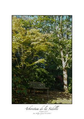 arboretum 7.jpg