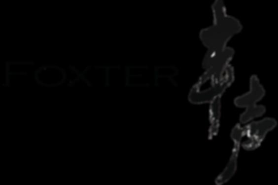 Foxter Sound Concept Limited LOGO_Wh.png