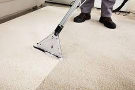 Carpet Cleaning rug.jpeg