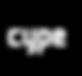 logo_cype NEGRO.png