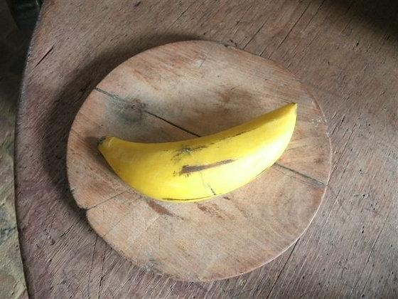# 239 Early Stone Banana