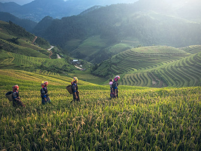 ASEAN National and Regional Frameworks for Promoting Green Jobs