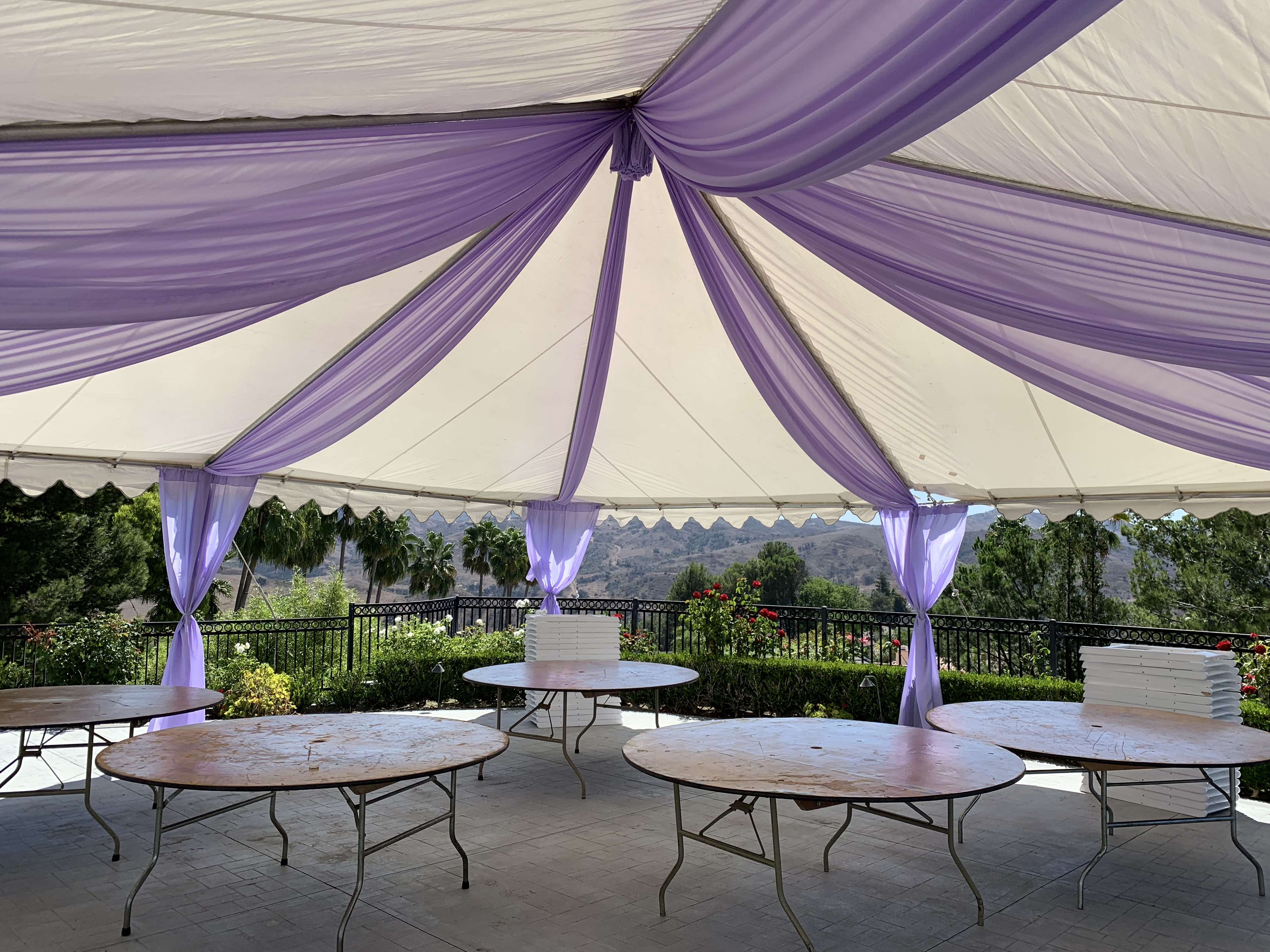 Canopy with Purple Design (2)