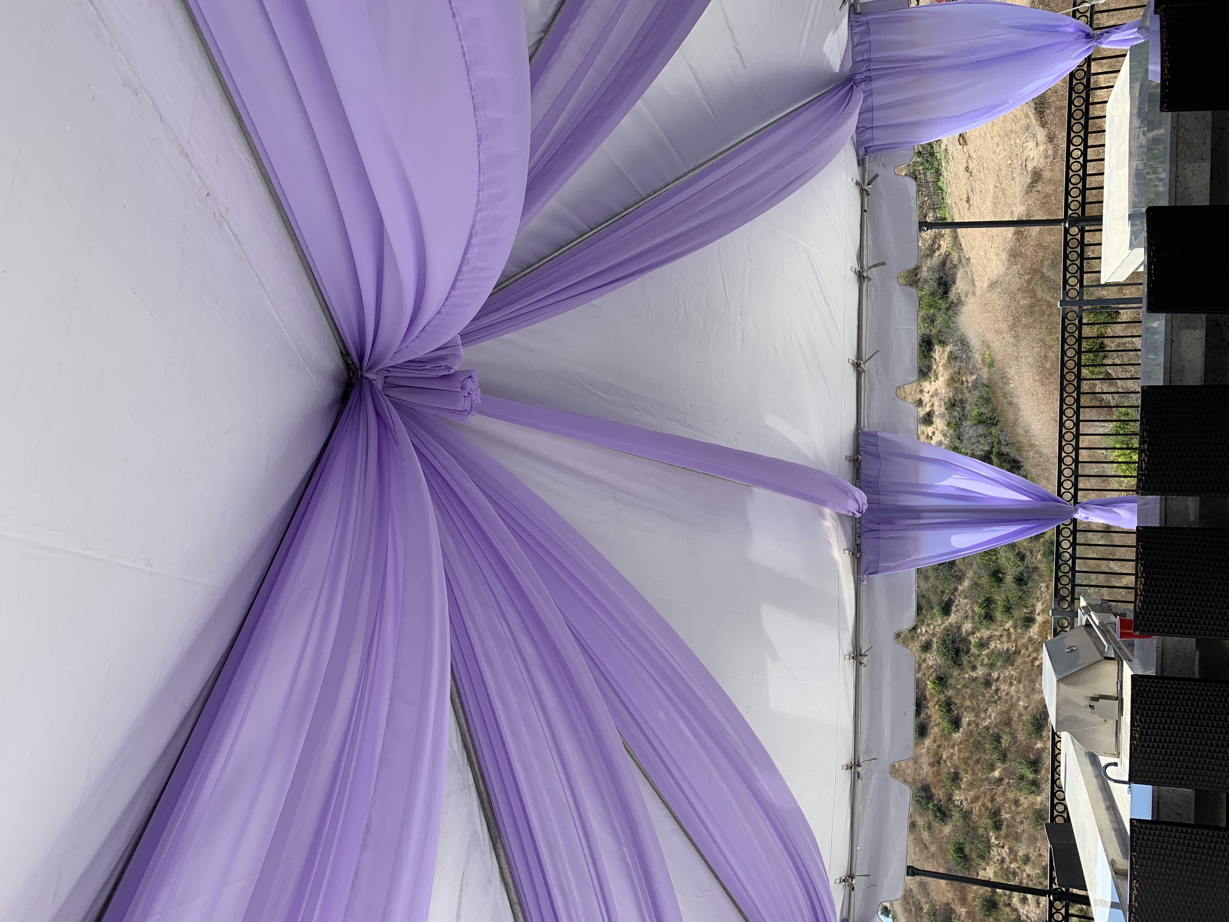 Canopy with Purple Design