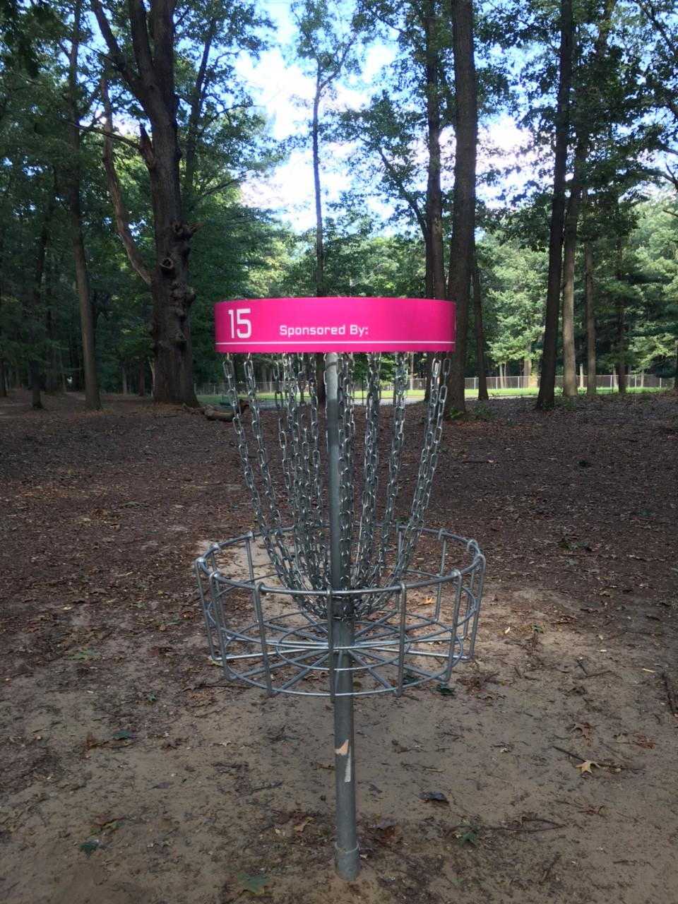 Disc Golf Basket Pinhead