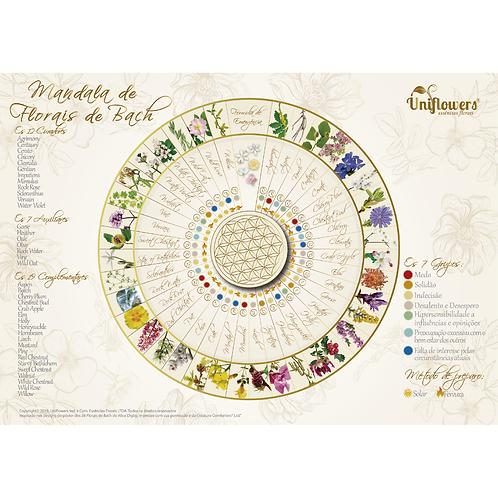 Mandala dos Florais de Bach