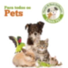 Florais Pet Uniflowers_Prancheta 1.png