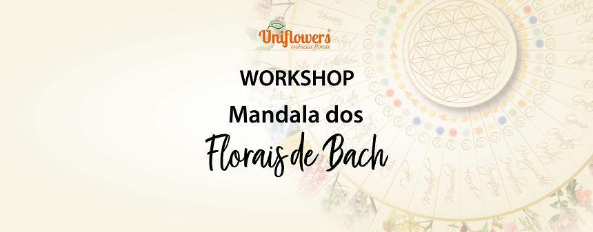 banner-workshop.jpg