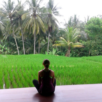 Bali retreat 2015