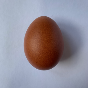 obeak wan egg.png