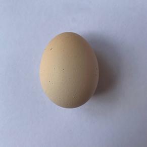 chewpecca egg.png