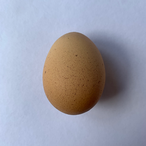 ronnie egg.png