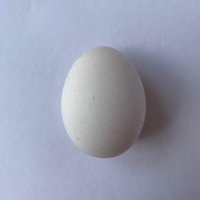 princess layer egg.png