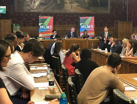 Julien Hoez at the Brexit APPG