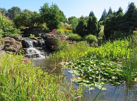 oregon garden.jpg