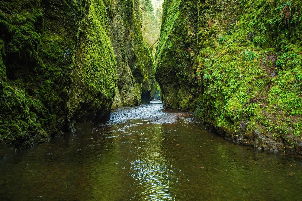 oregon waterfalls oneonta gorge