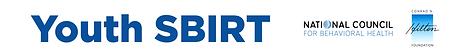 YSBIRT_Web_Banner.png