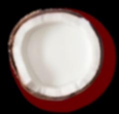 pinkcoconut-07.png