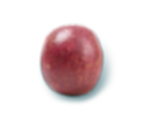 fruits-11.png