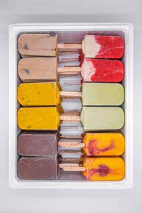Gourmet popsicles | Box of 100